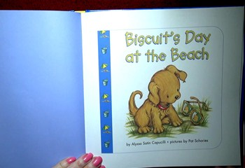 Biscuit Day at the Beach